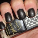 Black Magnetic Nail Polish